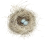 Nest Skylar Small Print by Elaine St Louis